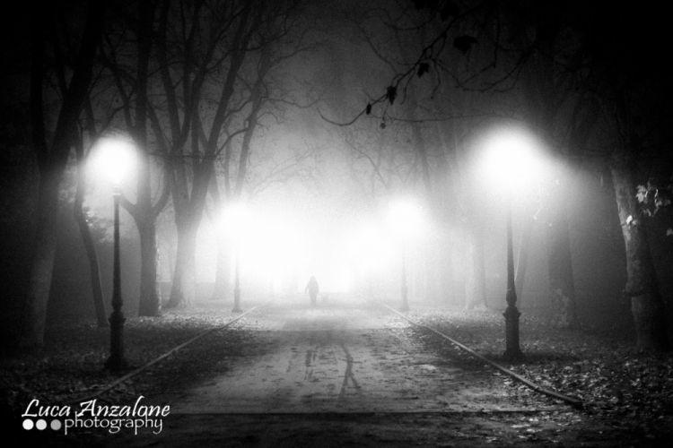 Cancello Nord Parco Ducale notturna con nebbia